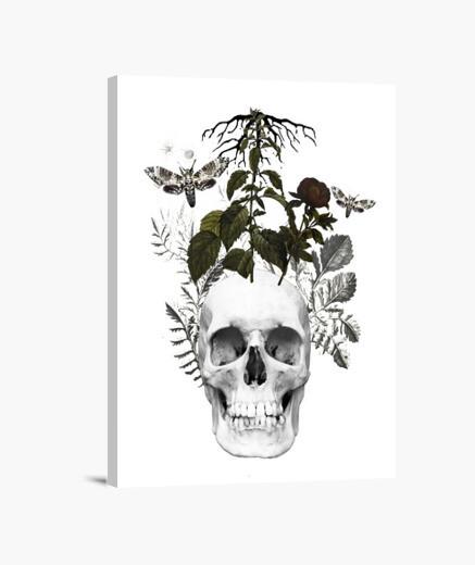 Lienzo calavera con flores y  animales