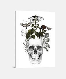 calavera con flores y  animales