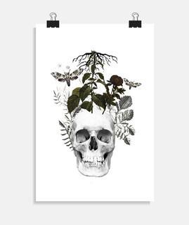 Calavera con flores y plantas