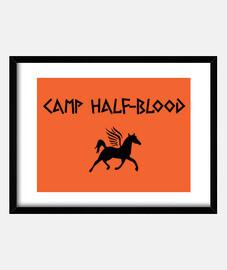 Camp Half-Blood - Percy Jackson