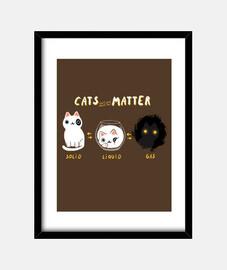 cat matters print