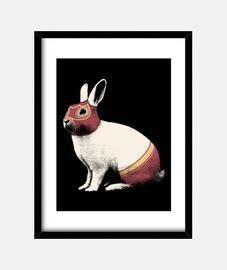 catcheur lapin