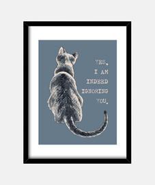 chat liberté