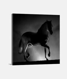 cheval y.es 062a 2019 cheval impression sur toile