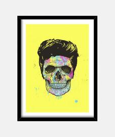 colora your morte