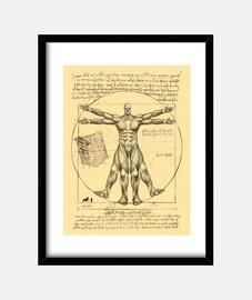 Colossal vitruvian print