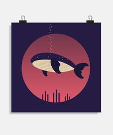contt de baleine