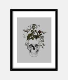 crâne avec des fleurs et des animaux
