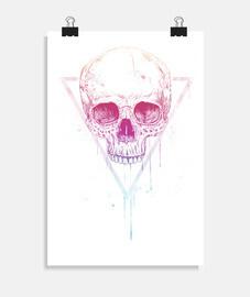 crâne dans le triangle