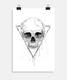 crâne dans un triangle ii