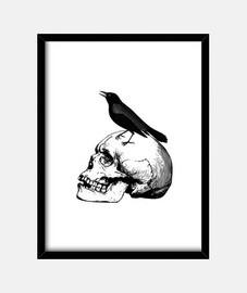 crâne gothique