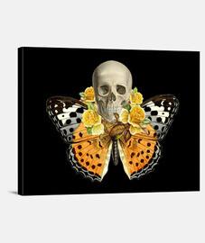 crâne papillon