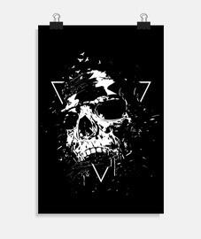 cráneo x