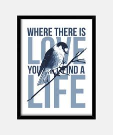 Cuadro Canario Pájaros Azul Mensaje