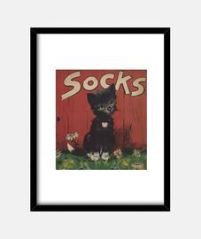 Cuadro Socks
