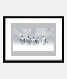 D_Pingüinos en la nieve