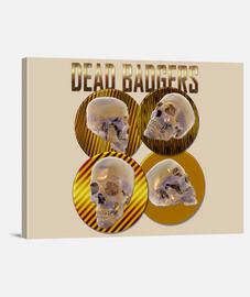 Dead Badgers