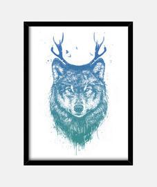 Deer wolf color