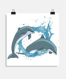 delfini con acquasplash