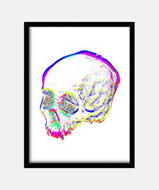 design non. 801451