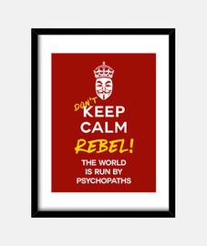dont keep calm framed print