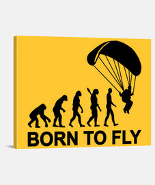 Evolution Skydiving born to fly