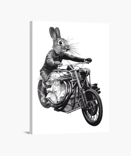 Fast Rabbit lienzo