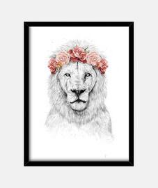 festival de lion