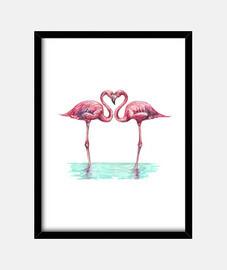 Flamencos rosas enamorados