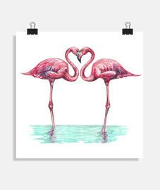 flamingos roses in lovers