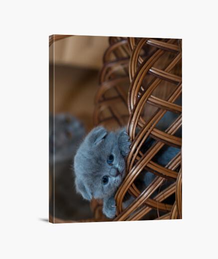 Lienzo Gatito asomándose por una cesta
