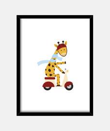 giraffa sul motorino