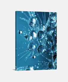 Gotas de agua congeladas