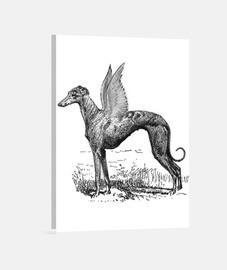 Greyhound divine