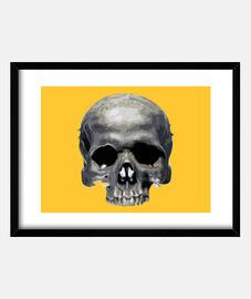 half-skull