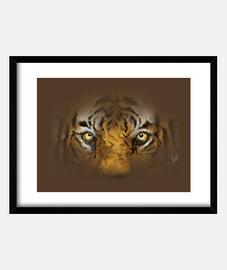 hidden tiger / hidden tiger