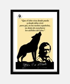 Homenaje a Félix Rodríguez de la Fuente