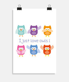 i just love owls!