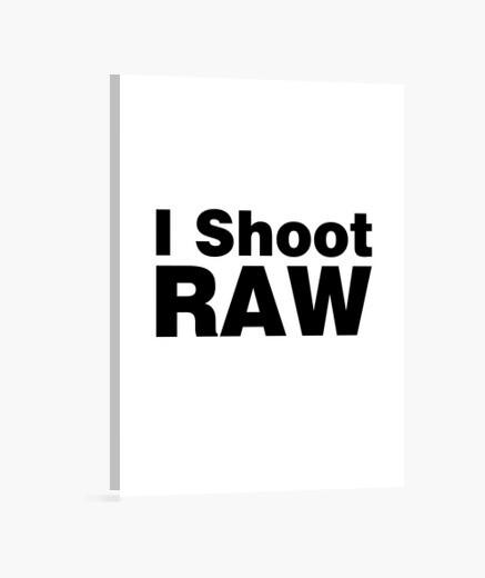 Stampa su tela i sparare (sfondo bianco)...