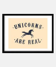 ii licornes sont réels