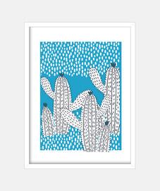 il cactus