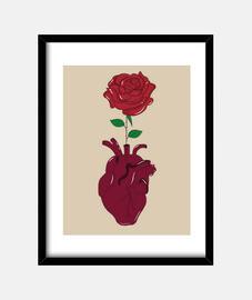 Ilustración Rosa en corazón