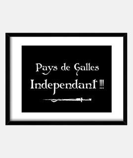 independent wales kaamelott