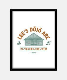 leggere dojo