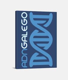 Lenzo ADN galego (mod. 2)