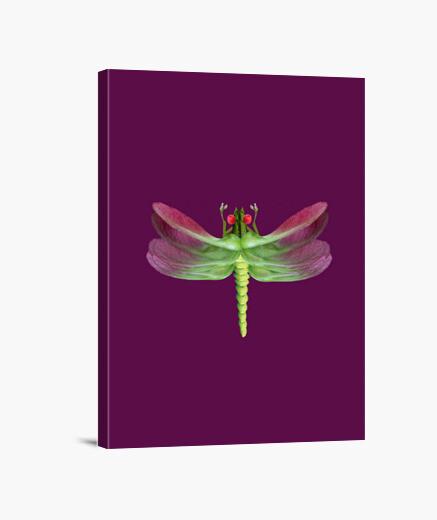 Lienzo libélula