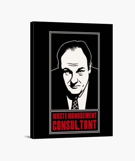 Lienzo Consultant