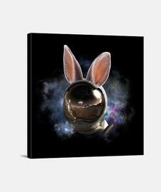 Lienzo de conejo espacial
