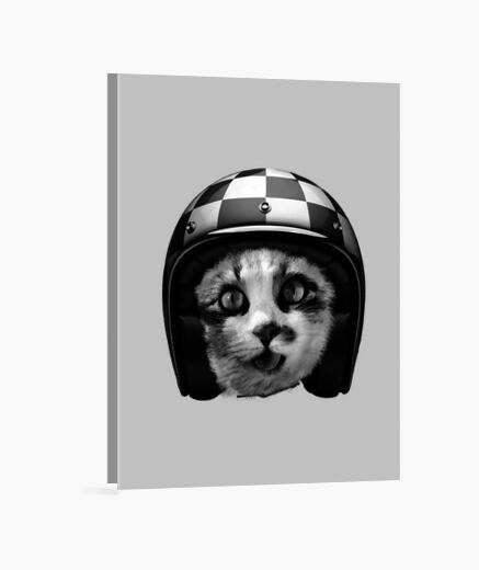 Lienzo gato del motorista