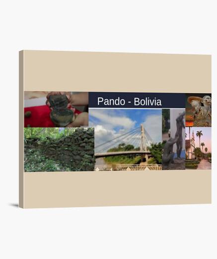 Lienzo Horizontal 4:3 - (40 x 30 cm) Pando Bolivia turismo